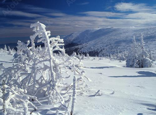 Szrenica mountain, Karkonosze mountains, Poland