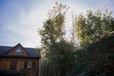 Fototapeta Fototapety na ścianę - sun over a wooden house in the forest © dyachenkopro