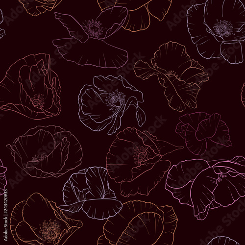 vector seamless pattern with drawing poppy flowers - 243420933