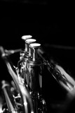 Classic musical cornet of black and white.