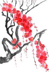 A branch of a blossoming sakura. Pink and red stylized flowers of plum mei, wild apricots and cherry . Watercolor and ink illustration of tree in style sumi-e, u-sin. Oriental traditional painting.