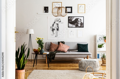 Posters above grey sofa with pillows in bright living room interior with flowers on table. Real photo - 243452941