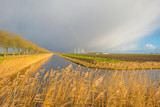 Fototapeta Tęcza - Rainbow over canal and fields in sunlight in winter  © Naj