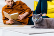 selective focus of man reading book and lying on floor with british shorthair cat