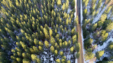 Aerial view of trees and a road in the snow - 243508183