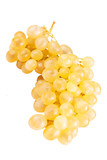 Ripe yellow grape isolated on white with clipping path