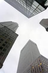 Skyscrapers, modern buildings in New York city