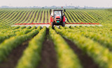 Tractor spraying pesticides at  soy bean field - 243525519