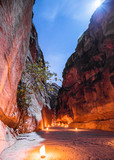 Petra at night under the Jordanian starry sky. Green lights the tree in the niche and on the ground the golden candles.