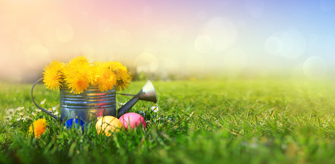 Easter eggs and watering can with spring flowers. Easter background. © Swetlana Wall