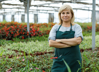 Mature female gardener standing near different plants in greenhouse © JackF