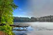 Winter spring combined photo of fallen tree. Masuria. Poland.