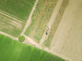 aerial shots of harvesting of a field - 243561958