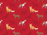 Cat Wallpaper 10 - 243596796