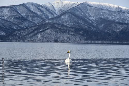 lake kusyaro in winter