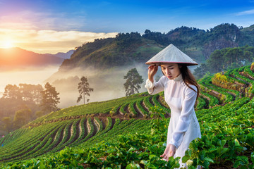 Asian woman wearing Vietnam culture traditional in strawberry garden at sunrise. © tawatchai1990