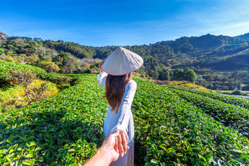 Asian woman wearing Vietnam culture traditional holding man's hand and leading him to green tea field. © tawatchai1990
