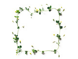 Spring Frame Made Of Meadow Flowers - 243635373