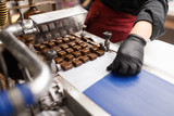 production, candy shop and people concept - confectioner making candies by chocolate coating machine at confectionery - 243646315