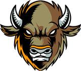 Buffalo - 243646750