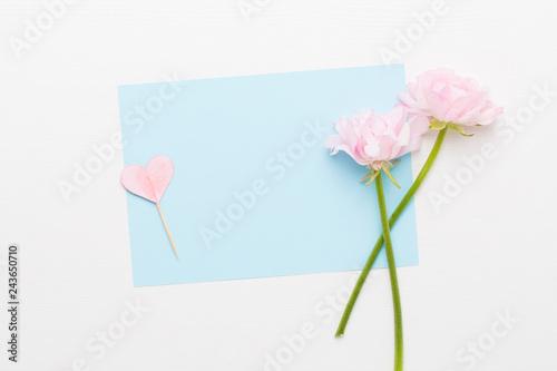 Leinwandbild Motiv Beautiful colored ranunculus flowers on a white background.Spring greeting card.
