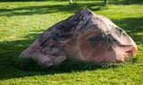 Boulder on the Lawn in Park