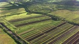 Maui, Hawaii circa-2018.  Aerial view of farmlands on Maui.  Shot with Cineflex and RED Epic-W Helium.  - 243681989
