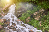 Waterfall and clear river in a mountain stream in a green rocky forest. summer sunny day