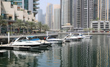 Many beautiful white stylish yachts moored in a harbour of Dubai. - 243689745