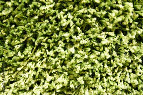 Carpeting woolen hinge green tint