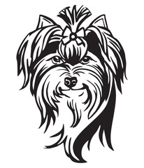 Decorative portrait of Dog Yorkshire Terrier vector illustration © alinart