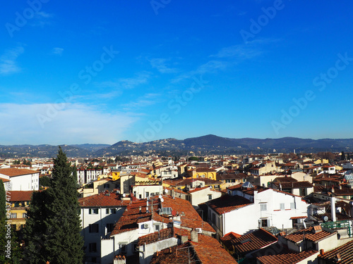 Landscape of Florence with trees