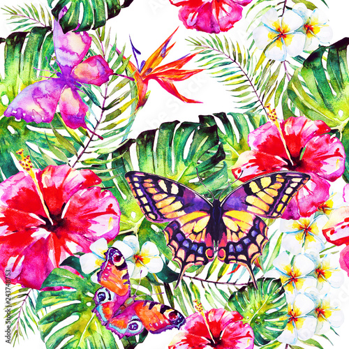 Hawaiian flowers, butterflies, watercolor, exotic plants, isolated on a white - 243748753