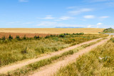Dirt road with fields in Colorado