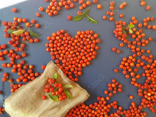 Heart of berries on a blue background - 243754984