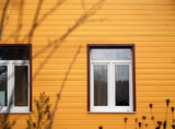 Windows and wall painted in yellow - 243818147