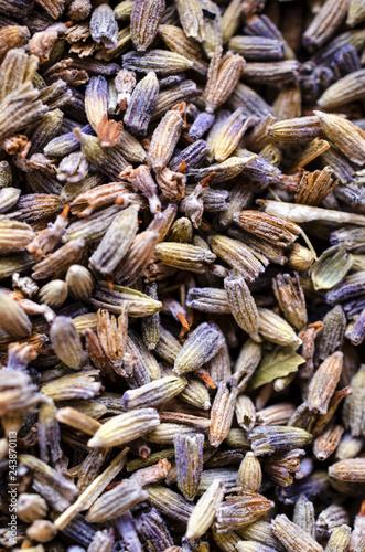 Lavender Flower Buds Background - 243870113