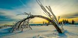 Wunderschöner Schneelandschaft im Winter Schwarzwald