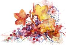 """Постер, картина, фотообои """"vine on white background"""""""