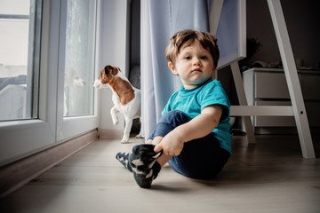 Little toddler boy play at home with his jack russell terrier dog. © Masson