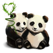 Two pandas and a bamboo branch
