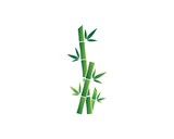 Bamboo with green leaf vector icon