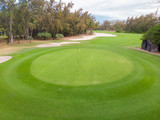 View of golf course hole green and sand traps.