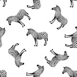 Fototapeta Fototapeta z zebrą - Zebra seamless pattern. Wild animal texture. Striped black and white. design trendy fabric texture. Vector illustration isolated on white background. © wowow