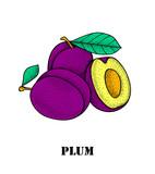 Fresh juicy plum