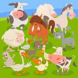 farm animals on meadow cartoon illustration - 244079516