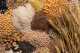 Cereal grains - 244167973