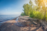 Fototapeta Fototapety na ścianę - Landscape. foggy forest coast in the morning. distortion perspective fisheye lens © ARTPROXIMO