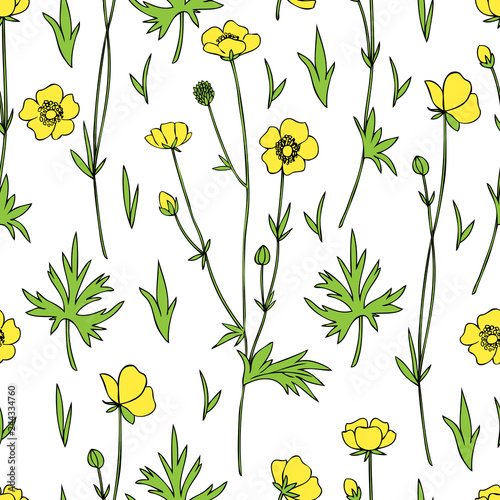 60e6f59d69d63 Seamless floral pattern Buttercup flower or Crowfoot vector illustration  isolated on white background, decorative herbal