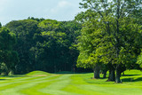 Golf Course Trees Scenic Hole - 244357125